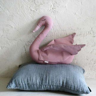 Swan rosa