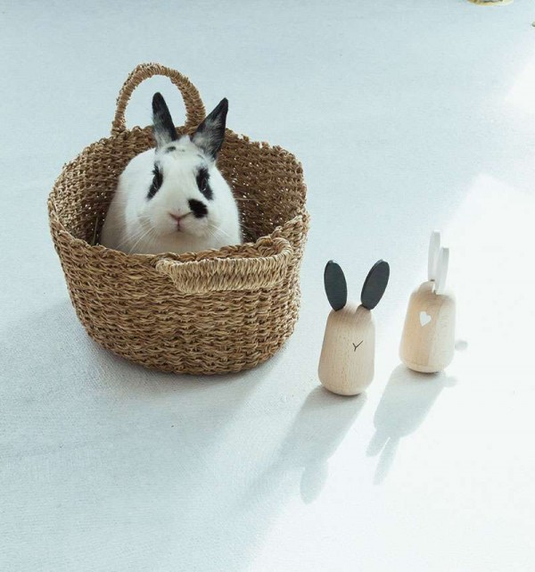 Kiko +& gg* Musical rabbits