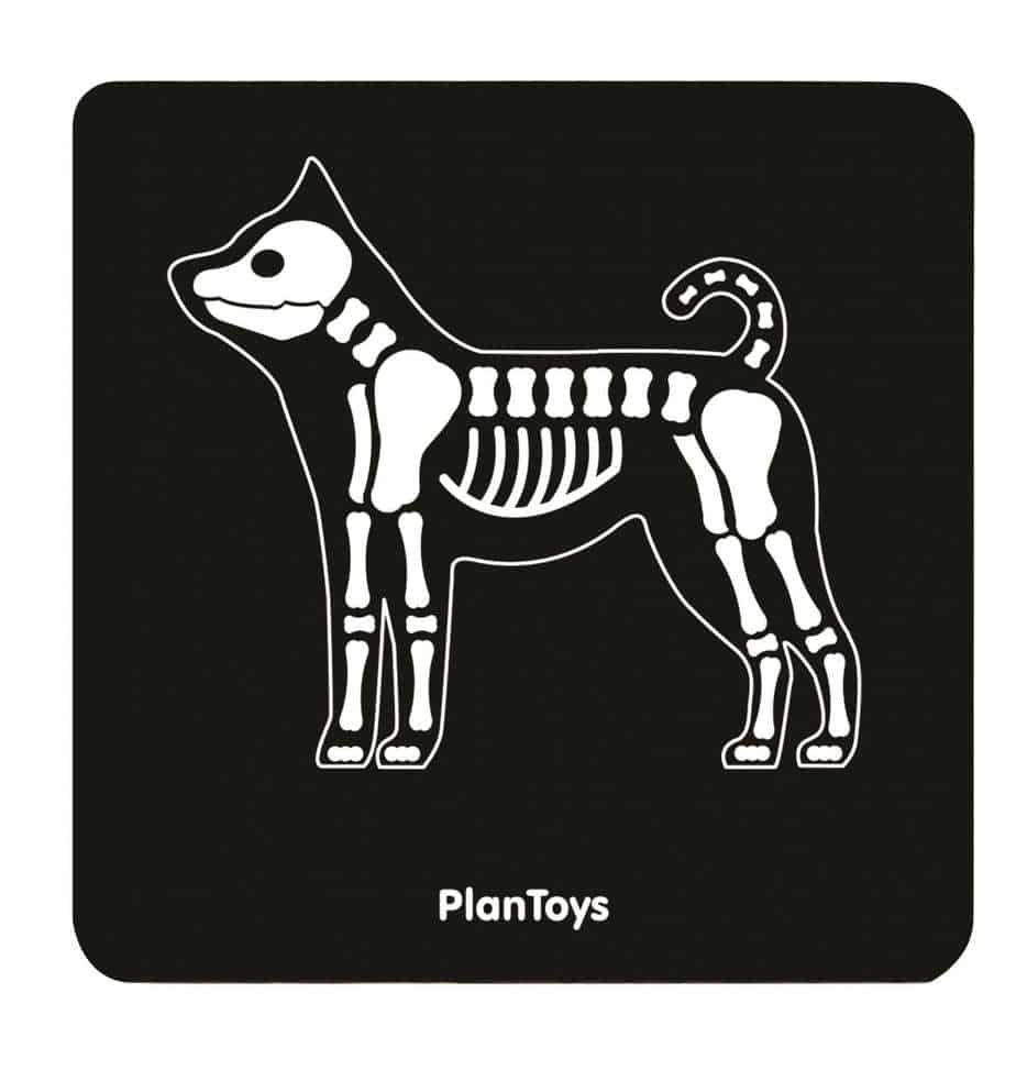 Plan Toys Tierarzttasche